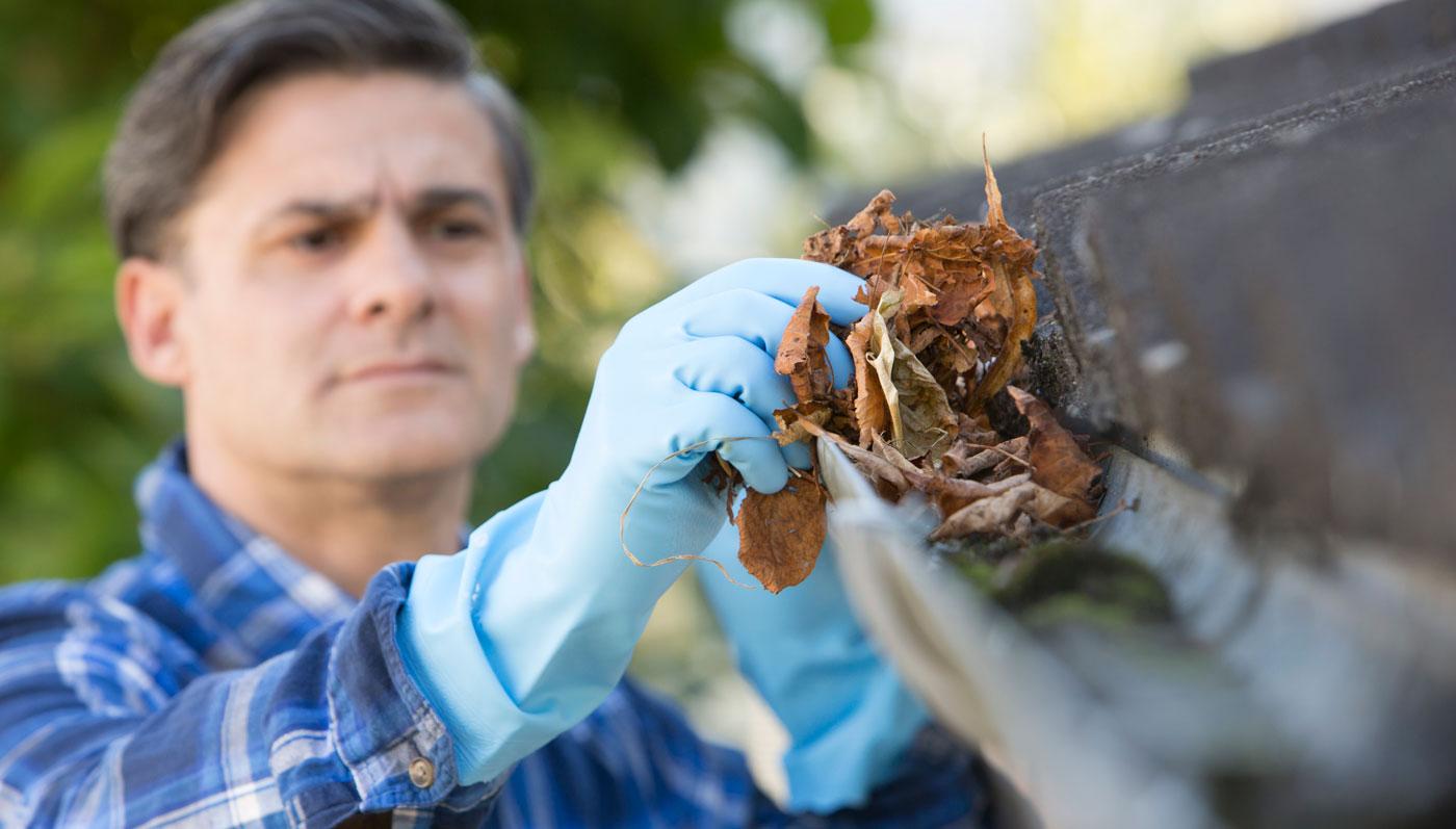 clean-gutters